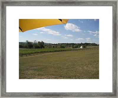 Vineyards In Va - 121249 Framed Print by DC Photographer