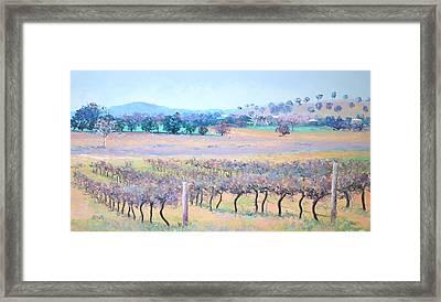 Vineyards Framed Print by Jan Matson