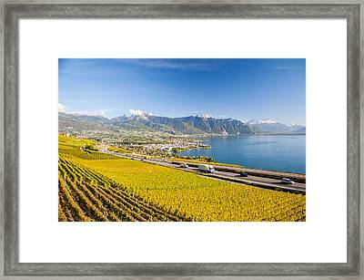 Vineyards Near Montreux Framed Print