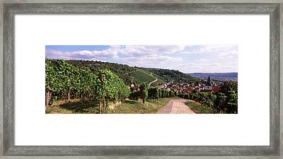 Vineyards, Obertuerkheim, Stuttgart Framed Print