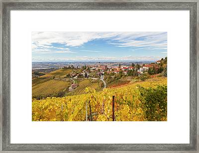 Vineyards, Treiso, Near Alba, Langhe Framed Print by Peter Adams
