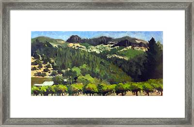 Vineyards Under The Palisades Framed Print by Char Wood