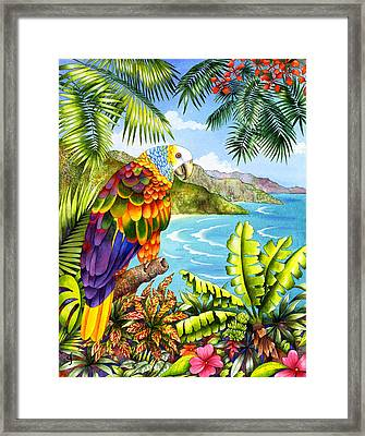 Vinnies Vista Framed Print by Carolyn Steele