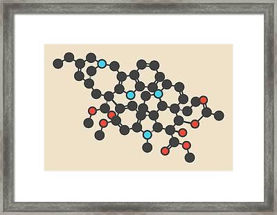 Vinorelbine Cancer Drug Molecule Framed Print by Molekuul