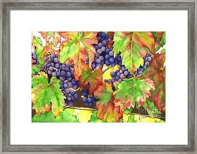 Vinous Framed Print by TR O'Dell