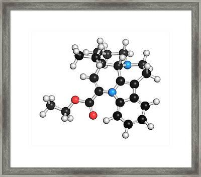 Vinpocetine Molecule Framed Print by Molekuul