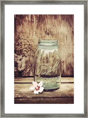 Vintage Ball Mason Jar Framed Print by Terry DeLuco