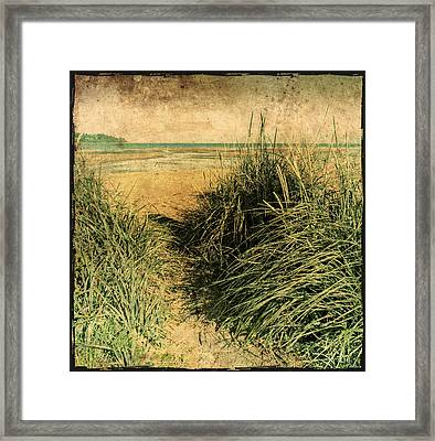 Vintage Beach  Framed Print by Roxy Hurtubise