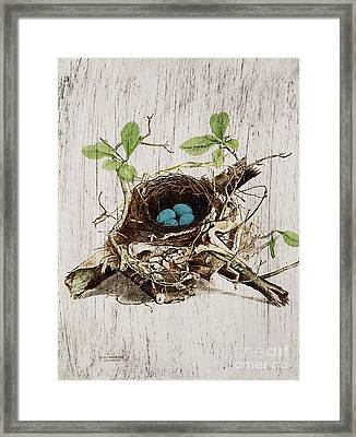 Vintage Bird Nest French Botanical Art Framed Print by Cranberry Sky