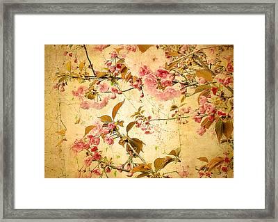 Vintage Blossom Framed Print by Jessica Jenney