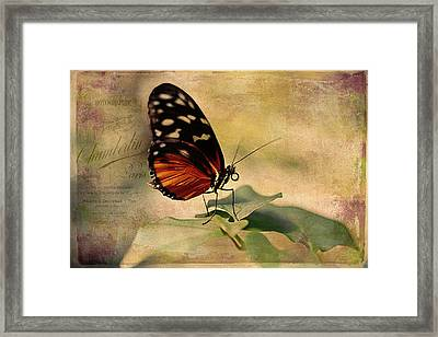 Vintage Butterfly Card Framed Print