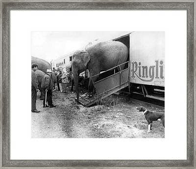 Vintage Circus Elephant Unloading Framed Print by Retro Images Archive