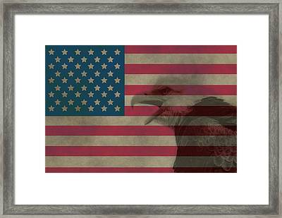 Vintage Flag With Bald Eagle Framed Print by Dan Sproul