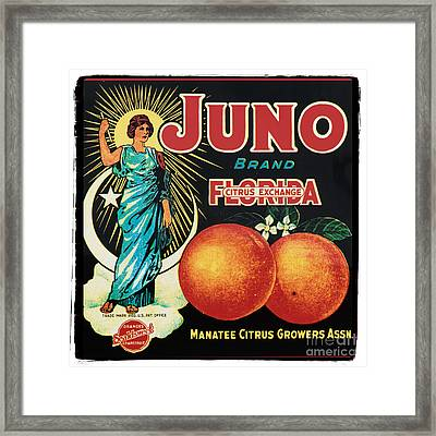 Vintage Florida Food Signs 1 - Juno Brand - Square  Framed Print by Ian Monk