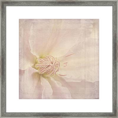Vintage Flower Art - A Beautiful Place Framed Print