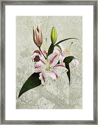 Vintage Flowers Framed Print by Lesley Rigg