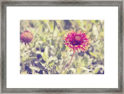 Framed Print featuring the photograph Vintage Flowers by Mohamed Elkhamisy