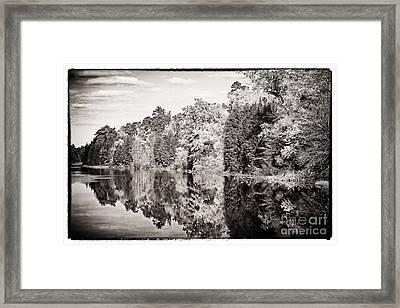 Vintage Foliage Framed Print