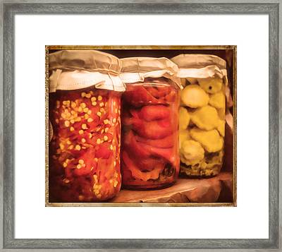 Vintage Fruit And Vegetable Preserves IIi Framed Print by Georgiana Romanovna