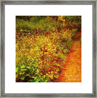 Framed Print featuring the photograph Vintage Garden Path by Terri Gostola