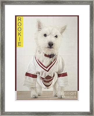 Vintage Hockey Rookie Player Card Framed Print by Edward Fielding