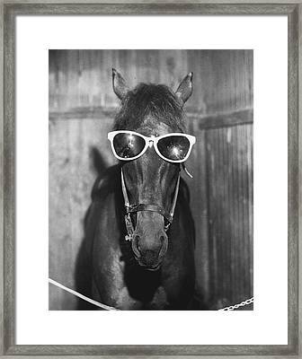 Vintage Horse Football Hero Fan Framed Print by Retro Images Archive