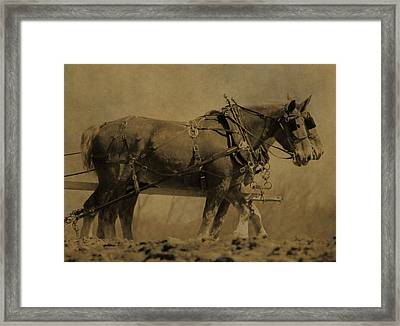 Vintage Horse Plow Framed Print by Dan Sproul
