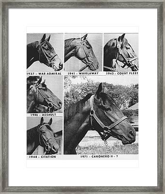 Vintage Horse Racing Head Shots War Admiral Framed Print by Retro Images Archive