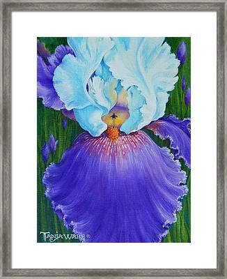 Vintage Iris Framed Print by Tanja Ware