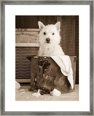 Vintage Laundry Framed Print