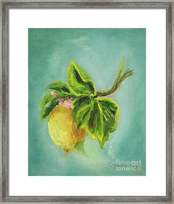 Vintage Lemon II Framed Print