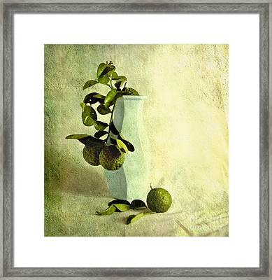 Vintage Limes Framed Print by Linde Townsend