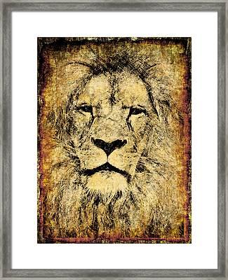 Vintage Lion King Framed Print