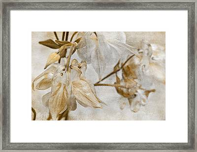 Framed Print featuring the photograph Vintage Neutral Flowers by Peggy Collins