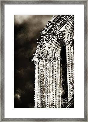 Vintage Notre Dame Details Framed Print by John Rizzuto