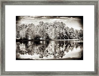 Vintage Pine Barrens Framed Print by John Rizzuto