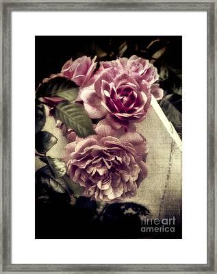 Vintage Pink Sisters Framed Print by Karen Lewis