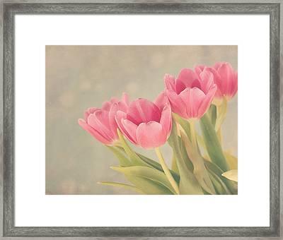 Vintage Pink Tulips Framed Print by Kim Hojnacki