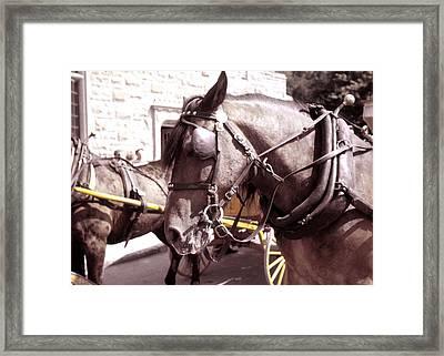 Vintage Ride Framed Print by JAMART Photography