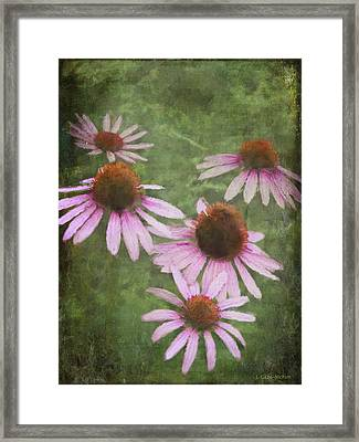 Vintage Romantic Beauty Framed Print
