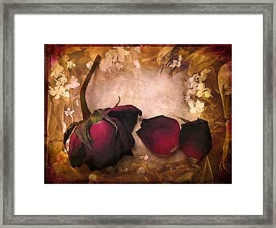 Vintage Rose Petals Framed Print by Jessica Jenney