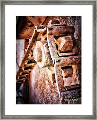 Vintage Rust Framed Print by Pam Vick