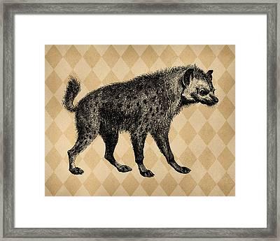 Spotted Hyena Framed Print