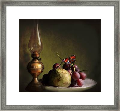 Vintage Still Life Butterfly And Fruits Framed Print