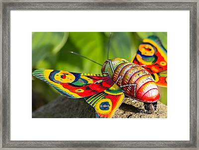 Vintage Tin Toy Butterfly Framed Print