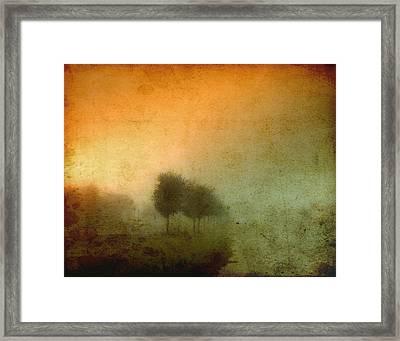 Vintage Tree Line Framed Print