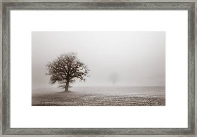 Vintage Treescape Framed Print by Chris Fletcher