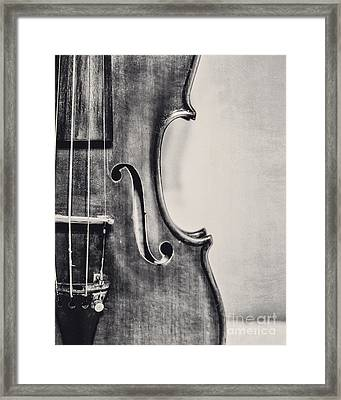 Vintage Violin Portrait In Black And White Framed Print