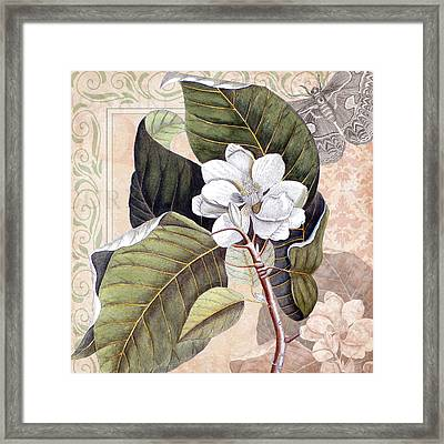 Vintage White Magnolia Framed Print by Antique Images