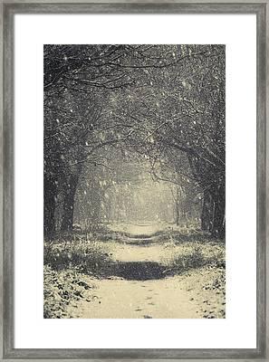 Vintage Winter Framed Print by Svetlana Sewell